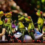 frogs-1364164_960_720